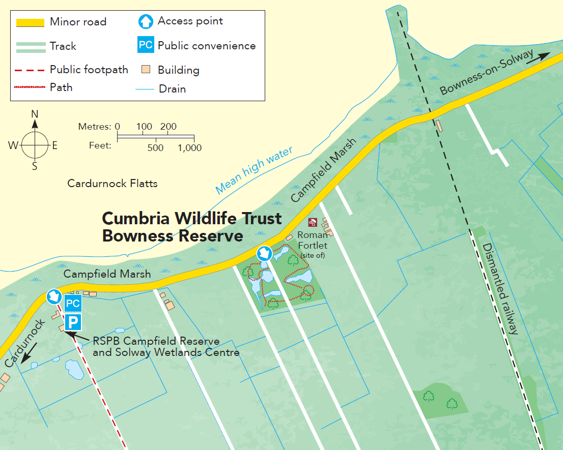 Bowness Reserve Cumbria WildlifeTrust