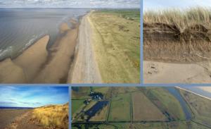 Coastal Conversations: Dynamic Dunes on the Solway Coast @ Webinar