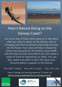 How's Nature Doing on the Solway Coast?